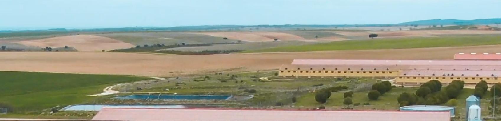 Granjas Duroc