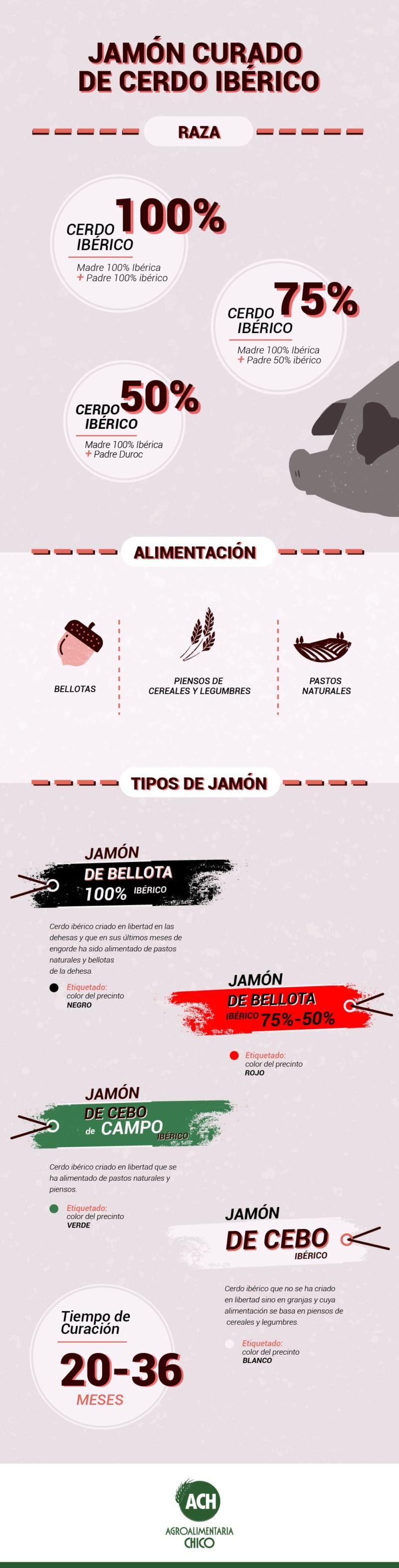 tipos de jamones ibericos